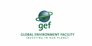 Global Environment Fund (GEF)